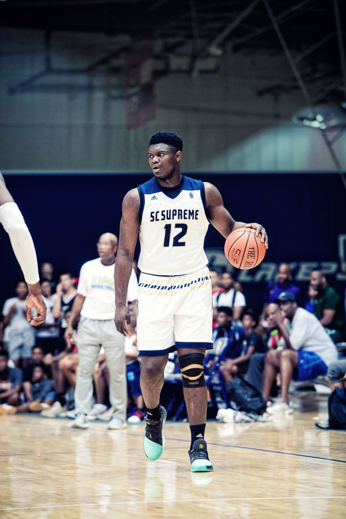 zion williamson - photo #22